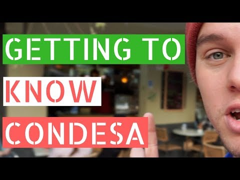 Getting to Know Our Neighborhood in Mexico City // Gringos in Mexico City Vlog