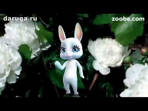 Добрые красивые короткие пожелания прикольные видео поздравления - Поиск видео на компьютер, мобильный, android, ios