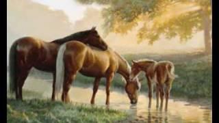 Native American Horses- Road Of Souls
