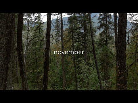 taylor swift type instrumental – november