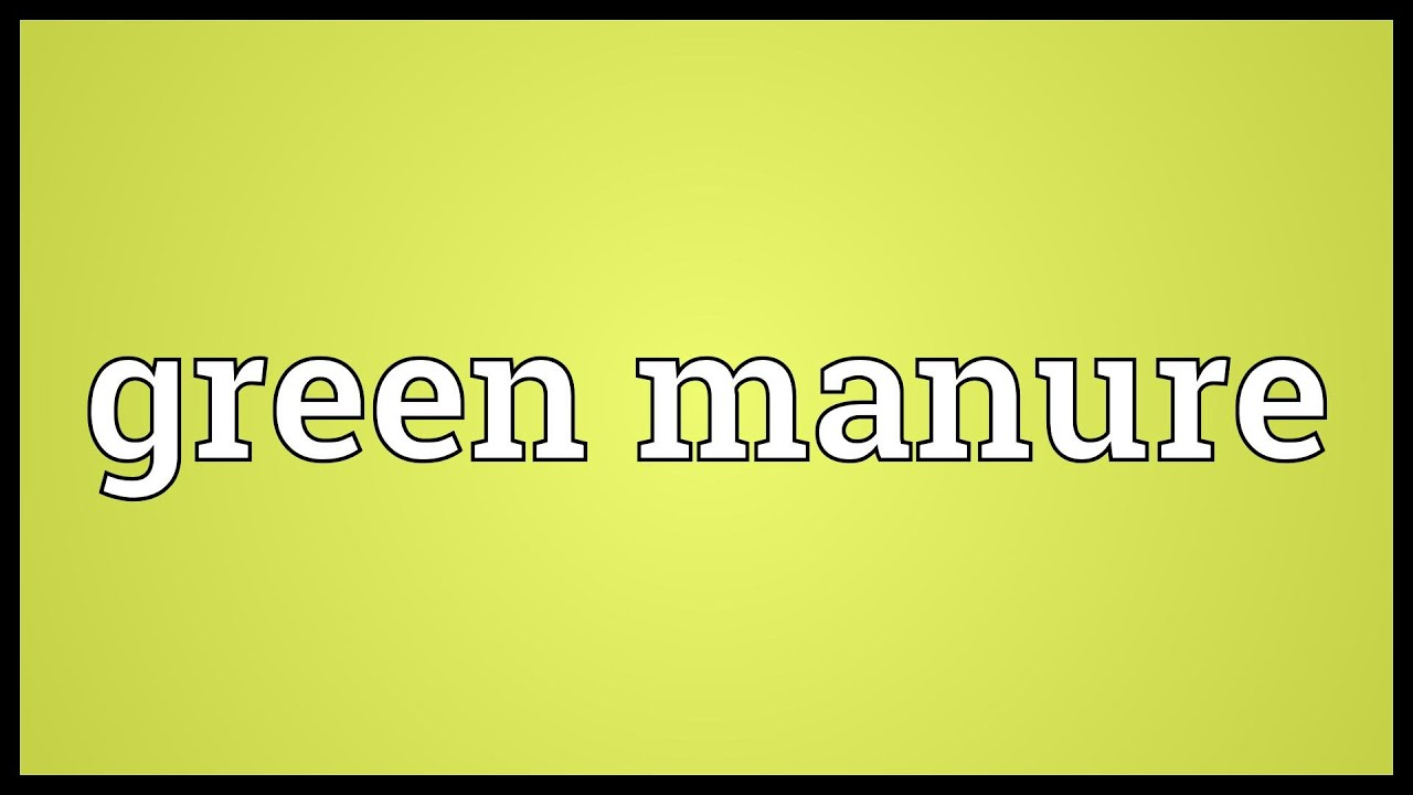 Green Manure Meaning