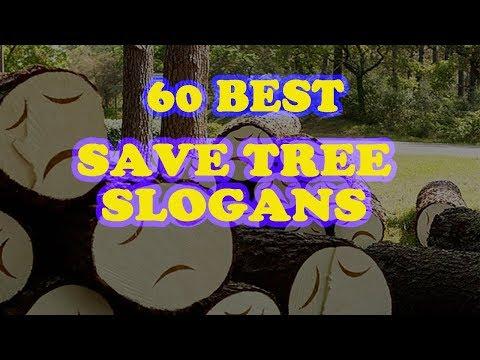 60 Best Save Tree Slogans