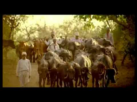 Gujarat Tourism Amitabh Bachchan Advertisement  Gir