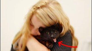 Уникальный и милый котик - Девушка с тяжёлым заболеванием помогает «особенным» питомцам
