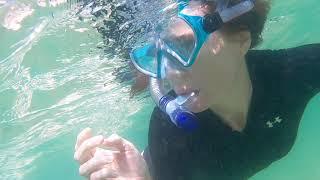 Download Kayak and snorkelling at Wavebreak Island