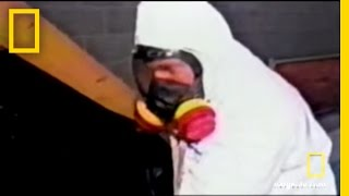 Underground LSD Lab | National Geographic Video