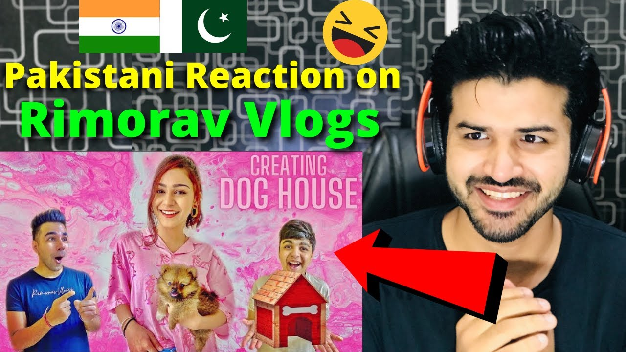 Pakistani React on CREATING DOG HOUSE WITH Diksha & Sanjay ...
