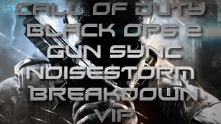 Call of Duty Black Ops 2 Gun Sync#10 - Noisestorm - Breakdown VIP