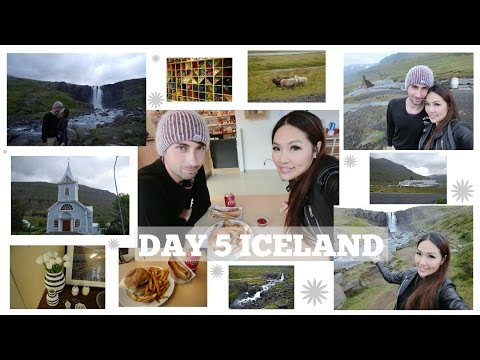DAY 5 ICELAND: SHEEP ON THE ROAD! | Angelbirdbb