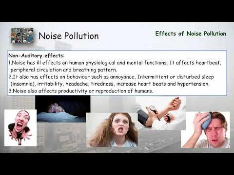 Noise Pollution - Environmental Studies