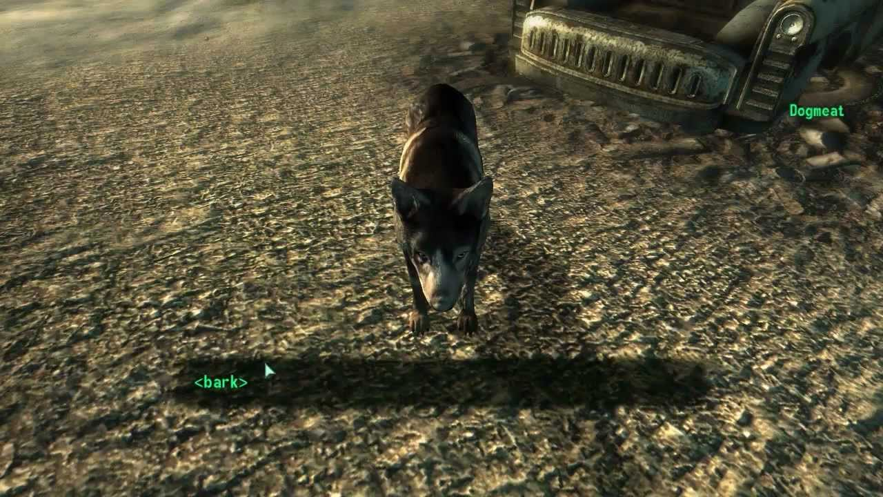 How To Get A Dog In Fallout New Vegas