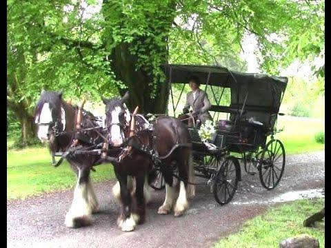 Horse-Drawn Wedding Carriage Anyone?!
