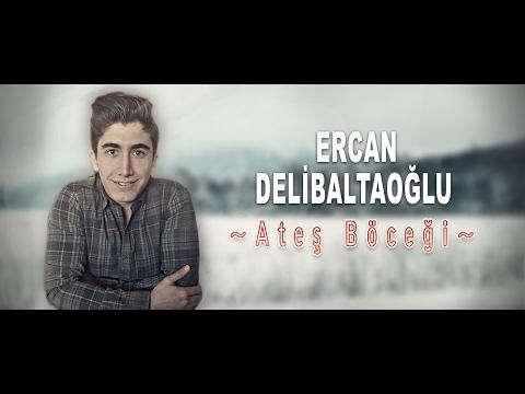 Ercan Delibaltaoğlu - Aşk Böceği [ Cover ]