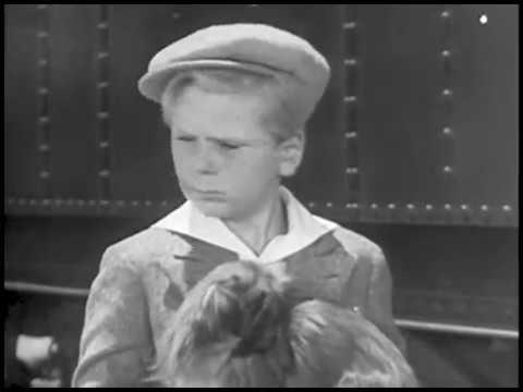 Peck's Bad Boy 1934 JACKIE COOPER