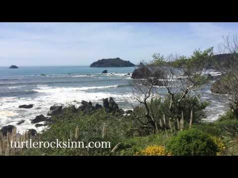 Trinidad California Beach Tour 2016