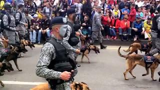 desfile 20 de julio 2017 , Bogotá 🇨🇴 parte 3