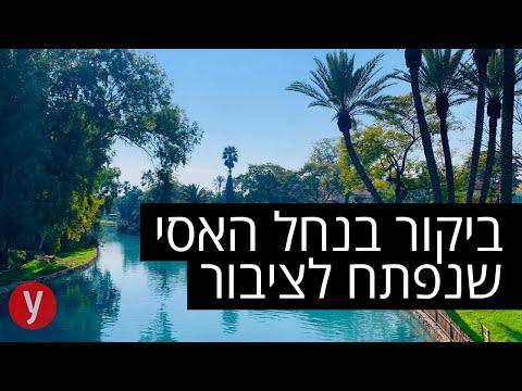 רצועה מהנחל הקסום בישראל תיפתח לציבור: ריאיון עם תושב הקיבוץ ונופש