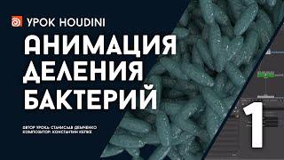 """Урок Houdini """"Анимация деления бактерий - Часть 1"""" (RUS)"""