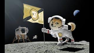 Dogecoin Faucet ПЛАТИТ ! / и о том как получить звезду на VIULY.