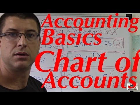 Accounting For Beginners #20 / Chart of Accounts / Assets, L