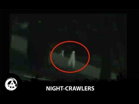 Alex Mac - Are the 'Fresno Nightcrawlers' real?