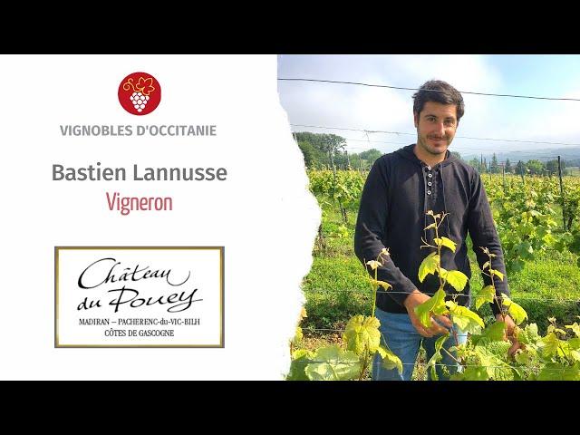 Bastien Lannusse, winemaker at Château du Pouey - AOP Madiran and Pacherenc-du-Vic-Bilh.