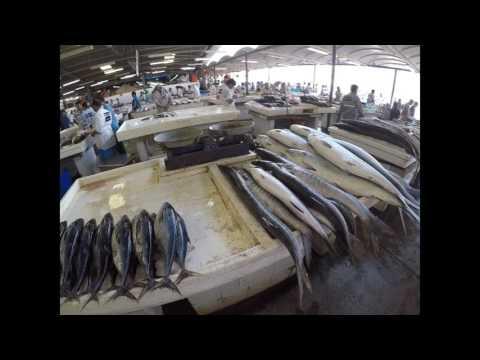 تغطيه سوق السمك دبي