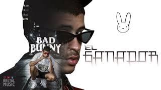 Verso De Bad Bunny En El Ganador