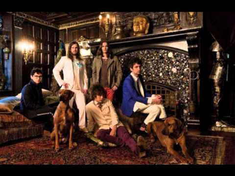 MGMT – All We Ever Wanted Was Everything Lyrics - Genius