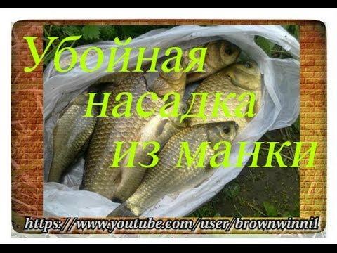 лучшая прикормка для рыбы летом