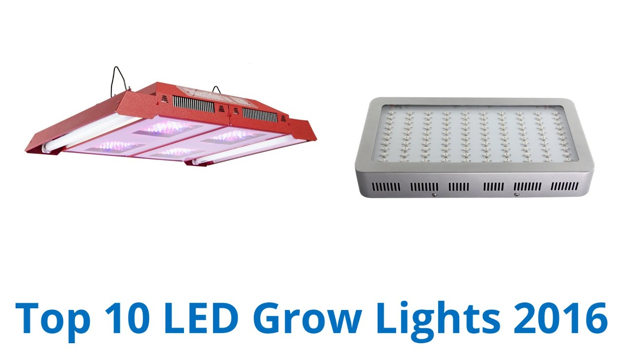 10 best led grow lights