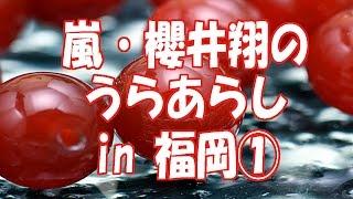 2014.11月14日~16日まで、福岡ヤフオクドームで行われた、...