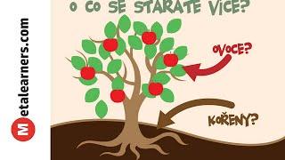 O co se staráte více? O ovoce nebo kořeny?