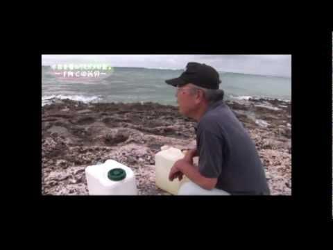 NO1 「ウミガメを守る」 小林夫婦の記録