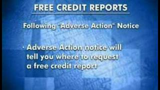 Identity Theft Prevention | Credit Reports & Fraud Alerts