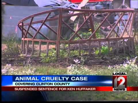 Suspended Sentence in Animal Cruelty Case