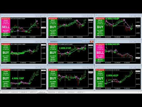 Live Now! Unique Indicators Analysis For Forex Market