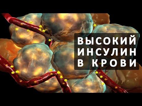 Как вывести железо из организма :: как быстро увеличить