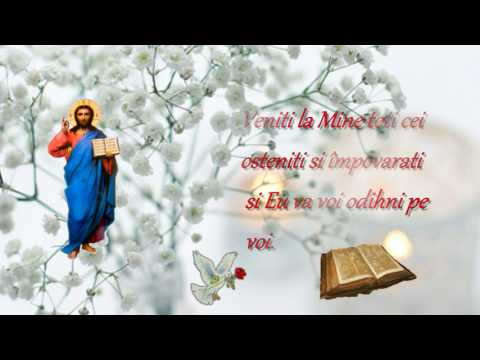 Cantari bisericesti ortodoxe - Corul Psalmodia - Bucura sufletul