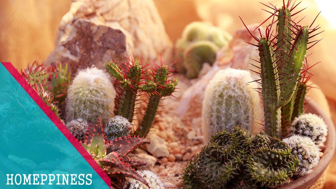 MUST SEE) 25+ Tempting Succulent Garden Design Ideas 2017 - YouTube