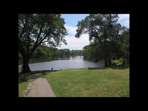 Silas Condict Park , New Jersey, USA