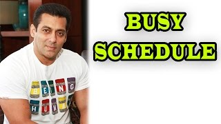 Salman Khan's Busy Schedule Keeps Him Away From His Reality Show | Bollywood News