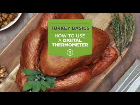 Turkey Basics: How To Use A Digital Thermometer