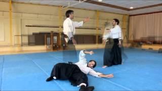 Aikido Ñuñoa - Santiago de Chile - Escuela de Aikido Shinsen