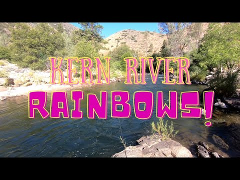 Trout Fishing On Peppermint Creek / Upper Kern River Fishing Report July 7th, 2020