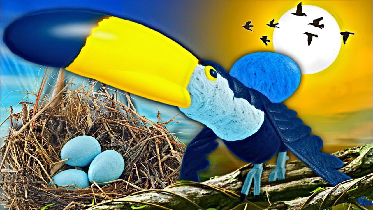 A História do Ovo Que Foi Abandonado Para Morrer no Ninho! Vida de Pássaro Roblox