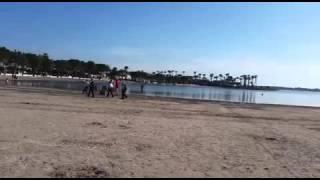 Пляж в Порт Алькудия в конце марта. Начало одного из самых длинный пляжей на Майорке.