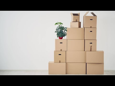 Q&A: My Daughter Is Moving Back Home After She Graduates College. Help!