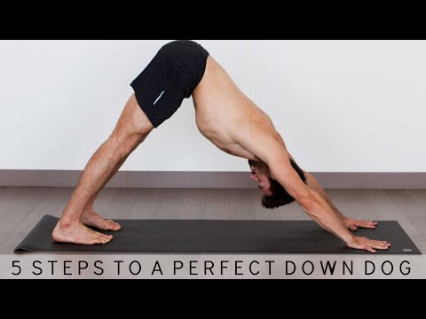 5 Steps to Perfect Down Dog and 3 Legged Downward Dog | Yoga With Tim