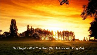 Nic Chagall - What You Need (Nic